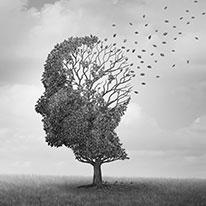 認知症の理解